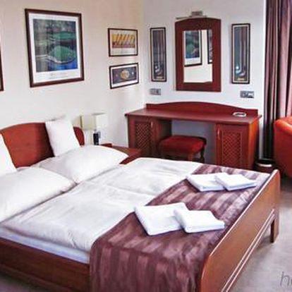 Luxusní Villa Miluška s vířivkou, saunou a piknikovým košem pro dva