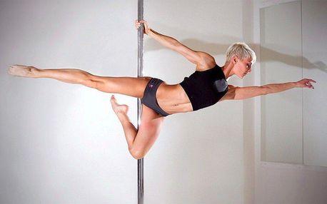Workshop Pole Dance pro začátečníky