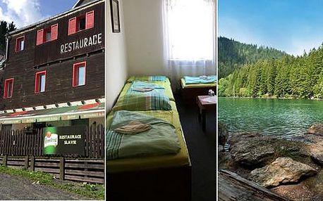 Šumava levně v Hotelu Slávie s polopenzí nebo snídaní