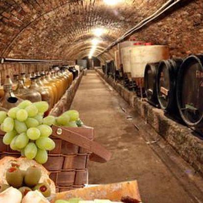 Vinařský pobyt pro dva s degustací a neomezenou konzumací vína