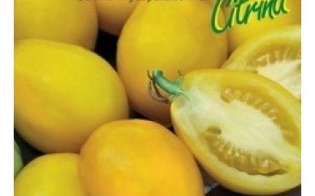 Rajče tyčkové citronové - Citrina - 40 semen - dodání do 2 dnů