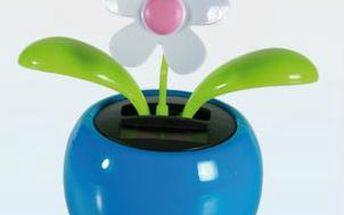 Solární tančící kytička - modrá