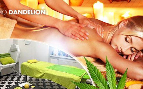 50min. masáž: zdravotní, konopná, ajurvedská či klasická thajská masáž, Ostrava