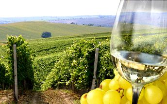 2denní pobyt s láhví vína v apartmánu U Krčků na jihu Moravy až pro 4 osoby