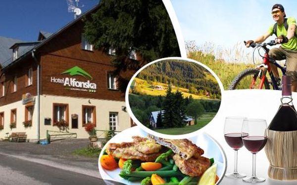 Vychutnejte si krásy krkonošské přírody a příjemný oddych v hotelu Alfonska na Benecku. 3, 4 nebo 6 dní pro 2 osoby s polopenzí, karafou vína a pro děti je připravena spousta prostoru pro řádění včetně trampolíny.