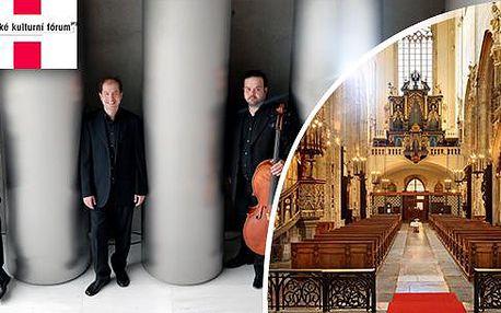 Klasická hudba: 2 koncerty za cenu 1! Koncerty: Smetanova síň a Týnský chrám, 20.8.-22.8.