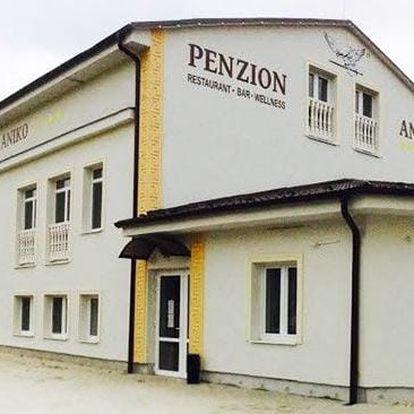 3, 5 nebo 6denní wellness pobyt v penzionu Aniko Gold u Galanty na Slovensku pro 2 osoby