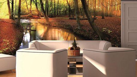 Fototapeta Podzimní les 400x280 cm