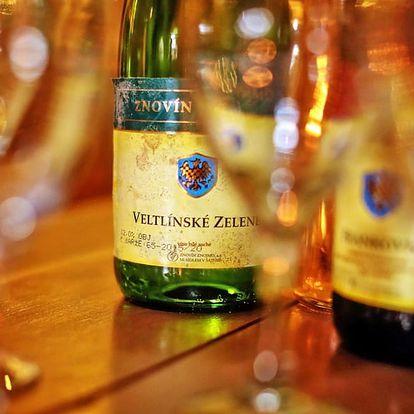 Dovolená na jižní Moravě pro DVA s bohatým vinařským programem a polopenzí – platnost do konce roku 2017