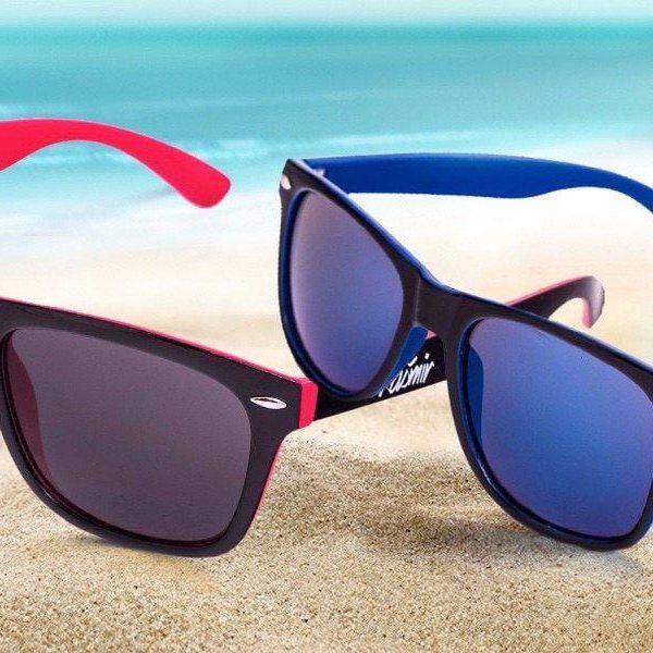 Dvoubarevné sluneční brýle Wayfarer s jezevčíkem