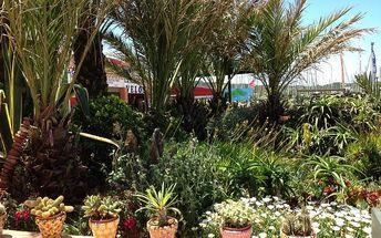 Riviéra - perly Azurového pobřeží s koupáním, Francie, Poznávací zájezdy - Francie, 5 dní, Autobus, Bez stravy, Alespoň 1 ★, sleva 18 %