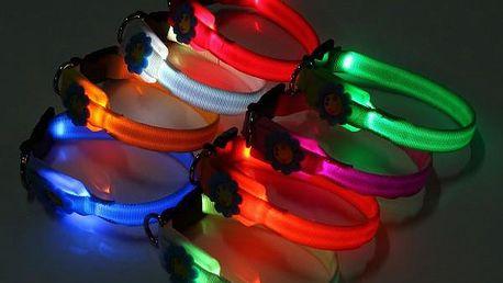 LED obojek s kytičkou - různé barvy - poštovné zdarma