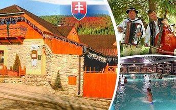 Užijte si Slovensko - relaxační pobyt pro 2 osoby na 3, 4 nebo 6 dní v Penzionu Kamenný dvor, lázně Vyšné Ružbachy. Vstup do termálního jezera, volně přístupné léčivé prameny a překrásná krajina Vysokých Tater. Sleva na wellness a bonusové noci!
