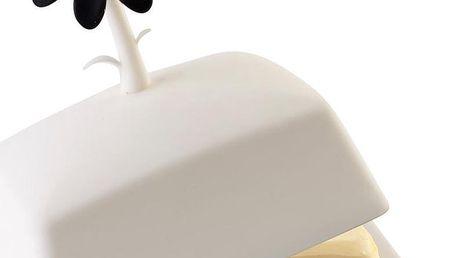 Bíločerná máslenka Livio