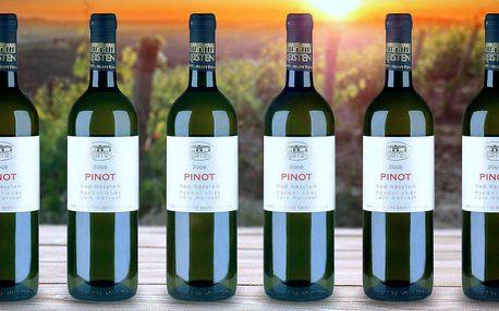 Sada 6 vynikajících bílých vín z Moravy
