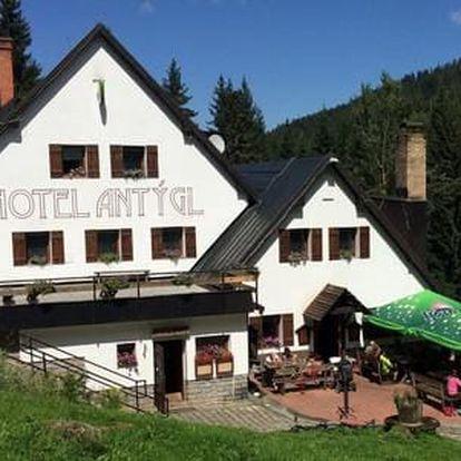 Pobyt pro dva v Hotelu Antýgl v atraktivní šumavské lokalitě