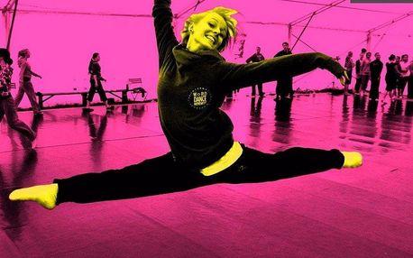 Taneční představení - Tanec Bez Hranic 2016
