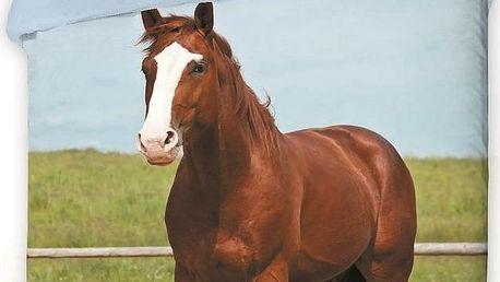 Jerry Fabrics bavlna povlečení fototisk -Koně 2016 140x200 70x90