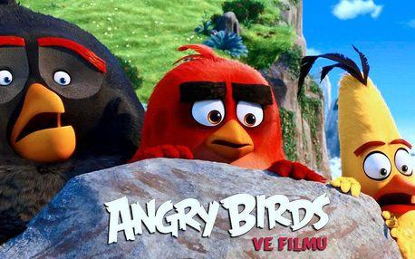 Dva lístky na animák Angry Birds ve filmu 3D