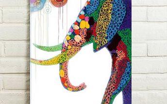 Obraz - slon v abstraktních barvách - 75 x 50 cm - poštovné zdarma