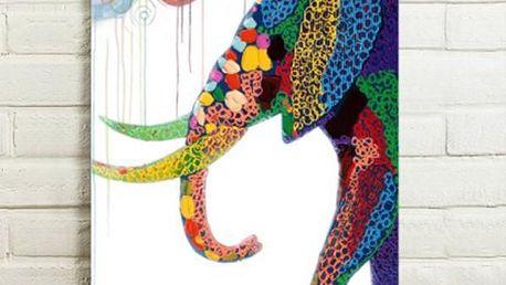 Obraz - slon v abstraktních barvách - 75 x 50 cm