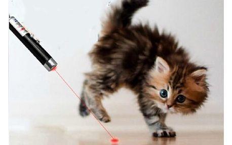 Laserová hračka pro kočky - 2 v 1