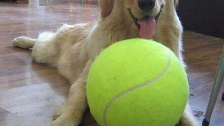 Gigantický tenisák pro psy