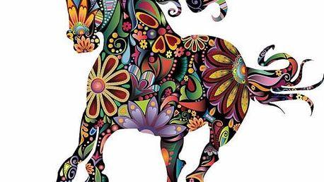 Samolepka na zeď - Abstraktní barevný kůň - poštovné zdarma