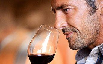 Vinařský kurz spojený s degustací excelentních vín v Praze
