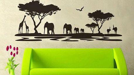 Dekorativní samolepka na zeď Africa