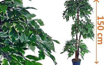 Umělý stromek - fíkus, 150 cm