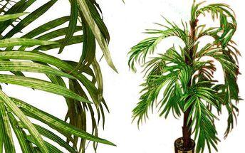 Umělá květina - Kokosová palma 140 cm