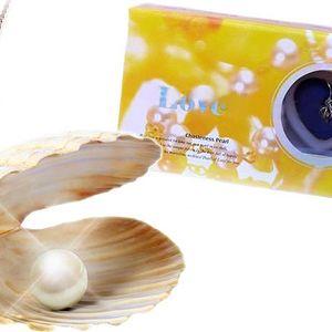 Perla přání v perlorodce s řetízkem a přívěskem v dárkové krabičce