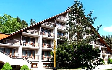 3denní wellness pobyt pro dva v Hotelu Radějov****, s polopenzí, finská sauna, parní sauna, bazén aj