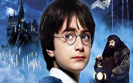 To nejlepší z Londýna s plavbou po Temži a možností návštěvy atelierů Harryho Pottera