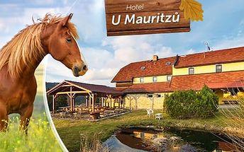 Šumava, Hotel U Mauritzů až na 3, 4 nebo 5 dní pro 2 osoby s polopenzí - produkty z farmy