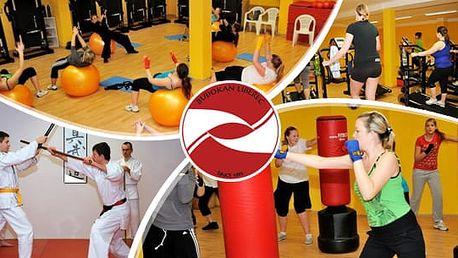 Permanentka na měsíc na cvičení: fitbox, Alpinning, body forming a další, Liberec