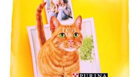 Friskies Cat Indoor 10 kg