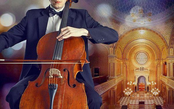 Vstup na libovolný koncert ve Španělské synagoze