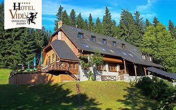 Horský wellness hotel VIDLY**** s polopenzí a saunou pro dva, dítě do 12 let zdarma