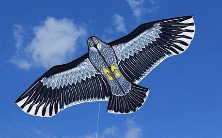 Velký létací drak Orel