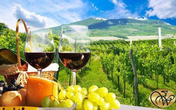 Vinařský pobyt v týdnu či o víkendu s neomezenou konzumací vín a degustací pálenky u Mikulova