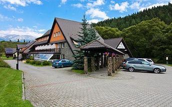 Hotel Sipox *** ve Vysokých Tatrách s polopenzí a neomezeným wellness pro 1 osobu