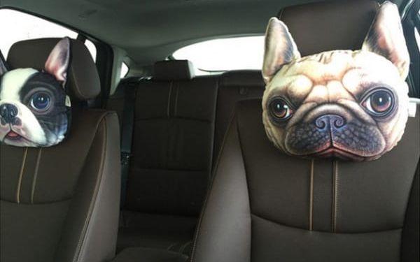 Psí polštářek do auta