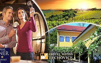 Jižní Morava, vinařský pobyt na 3-6 dní pro dva s polopenzí a neom. konzumací vína, do 3/2017