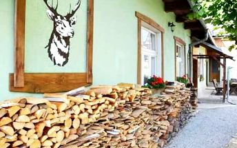 Zimní dovolená v Chatě U Jelena s polopenzí