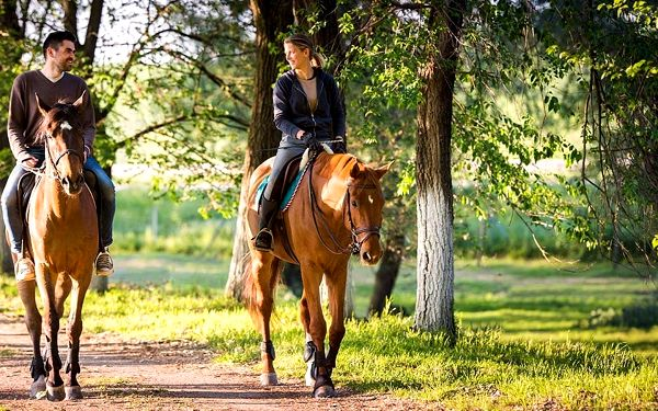 Pobyt pro dva s jízdou na koni v Selském dvoře