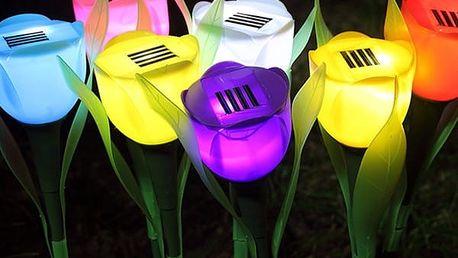Solární LED světlo v podobě tulipánu - 4 barvy - poštovné zdarma