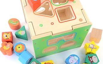 Dřevěná protlačovací kostka pro nejmenší děti
