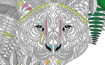 V hlubinách džungle - Kniha trhacích plakátů